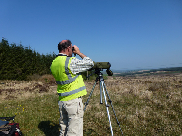 We also provide expert bird surveys and ornithological impact assessments