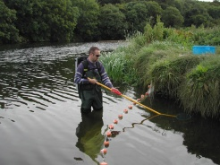 Surveying typical juvenile lamprey habitat on the River Boyne