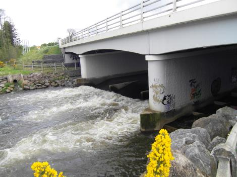 This crump weir and salmon counter on the Mulkear is probably a barrier to broo lampreys, river lampreys and eels. The salmon counts from this site are not available - does this counter even work?