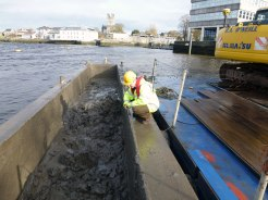 Maintenance of Monitoring for lamprey presence: Limerick City Navigation scheme