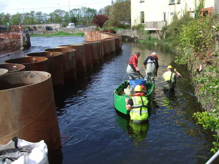 Lamprey and fish translocoation and salvage on the Fergus Flood Alleviation Scheme
