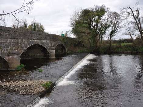 Bridge underpinning works are a barrier to migration for brook lampreys.