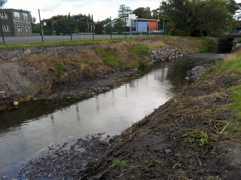 River Nanny Tuam. 17 August 2014